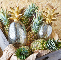 Home_Pinapple_Small